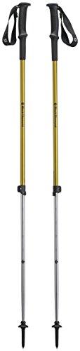Black Diamond Trekkingstock Trail Sport 3 / Verstellbare Wanderstöcke aus Aluminium mit integrierter Vibrationsdämpfung, One Size - 1